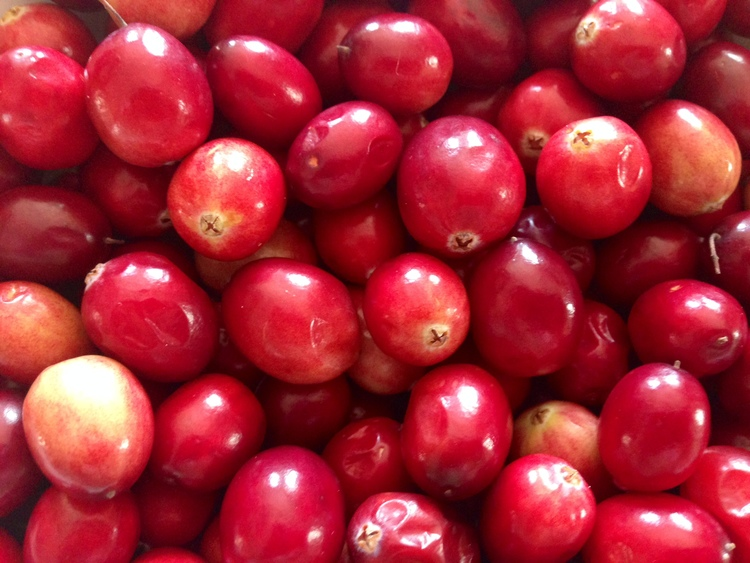 All Hail The Cranberry