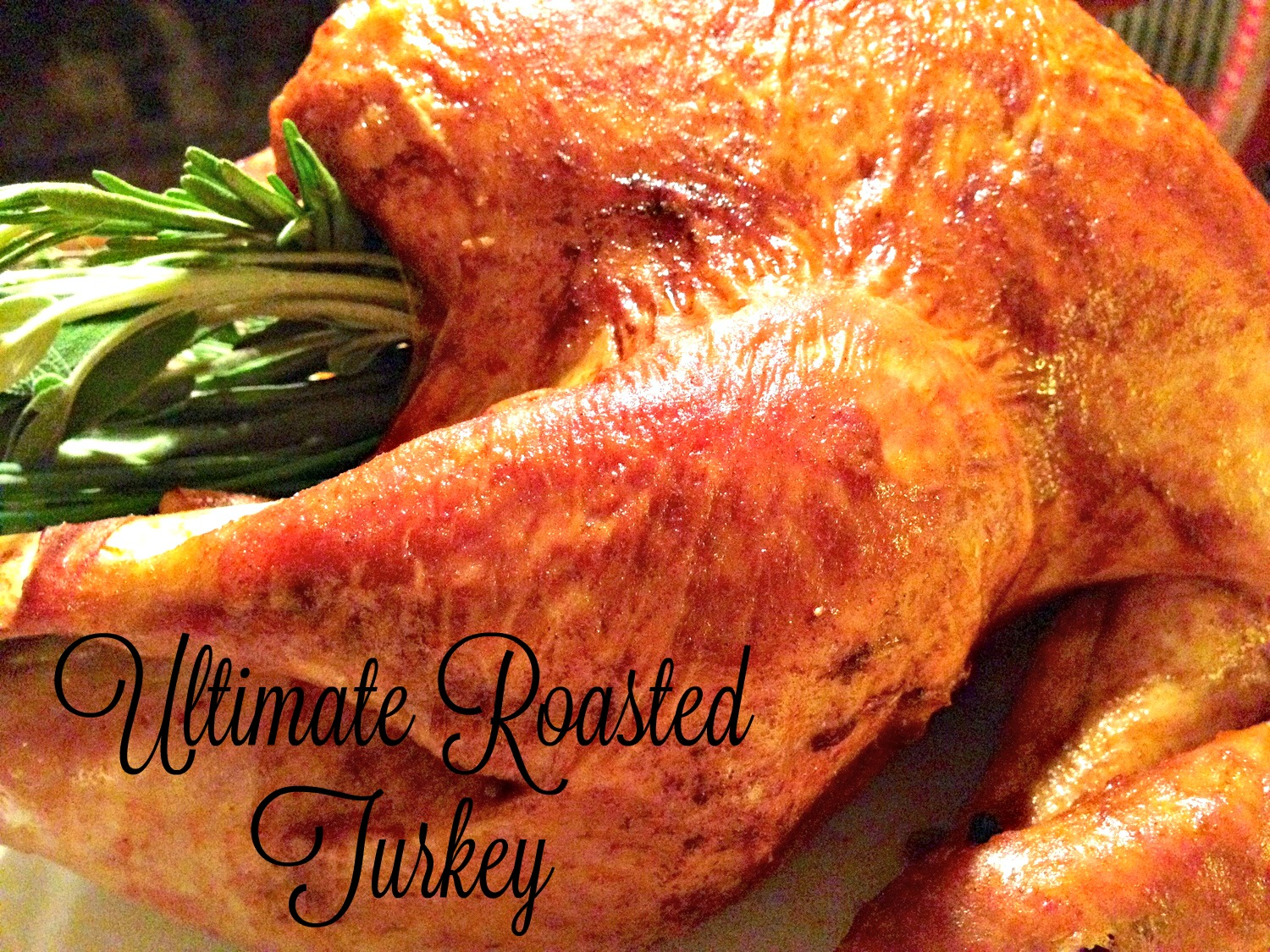 Sharing Thanksgiving Recipes – Ultimate Roasted Turkey & Cranberry Chutney