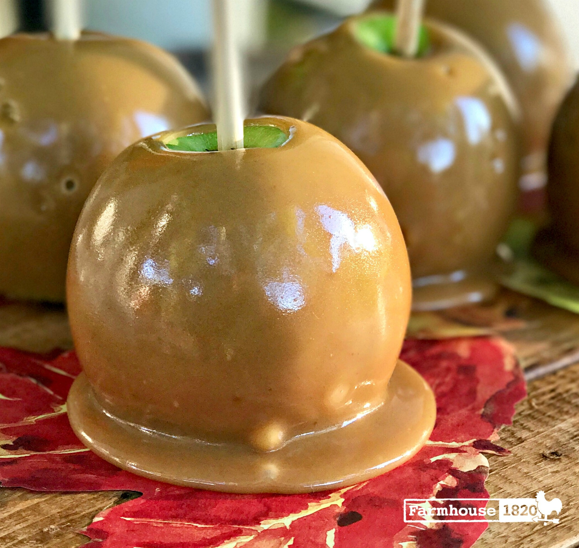 Caramel Apples - displayed on parchment leaves 2