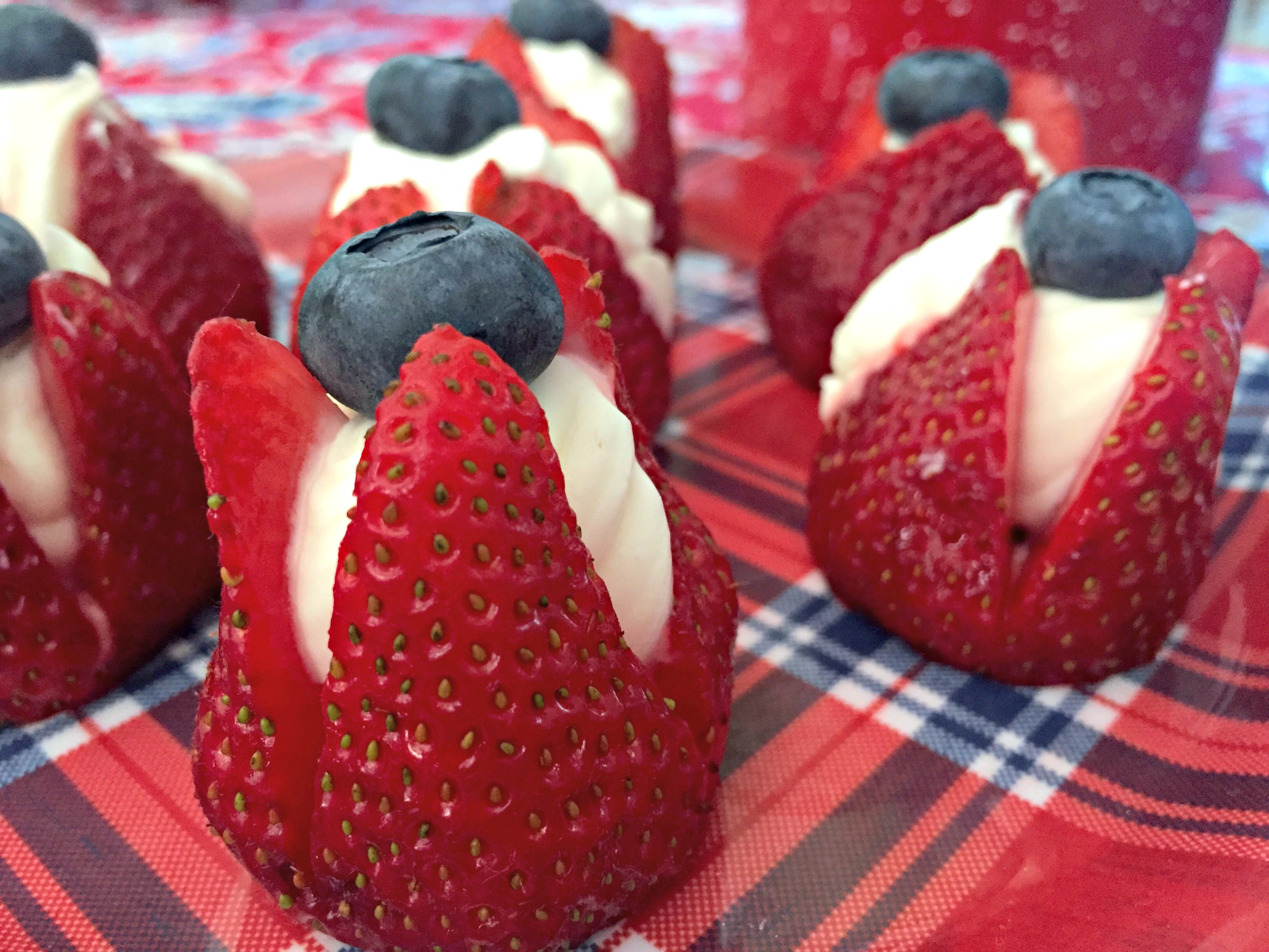 Sweet Treats For the Fourth of July