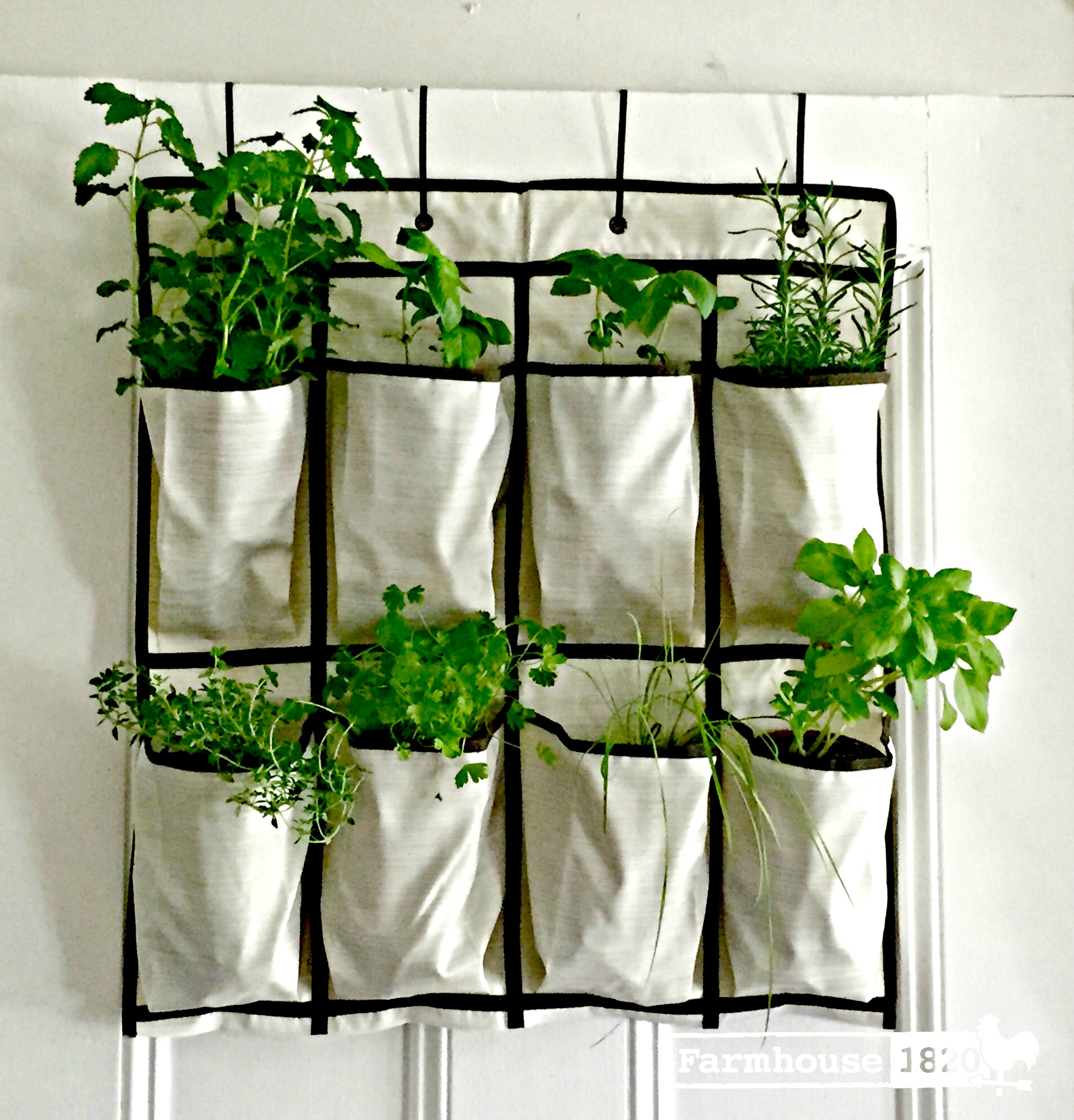 A Super Quick & Easy DIY Vertical Hanging Garden
