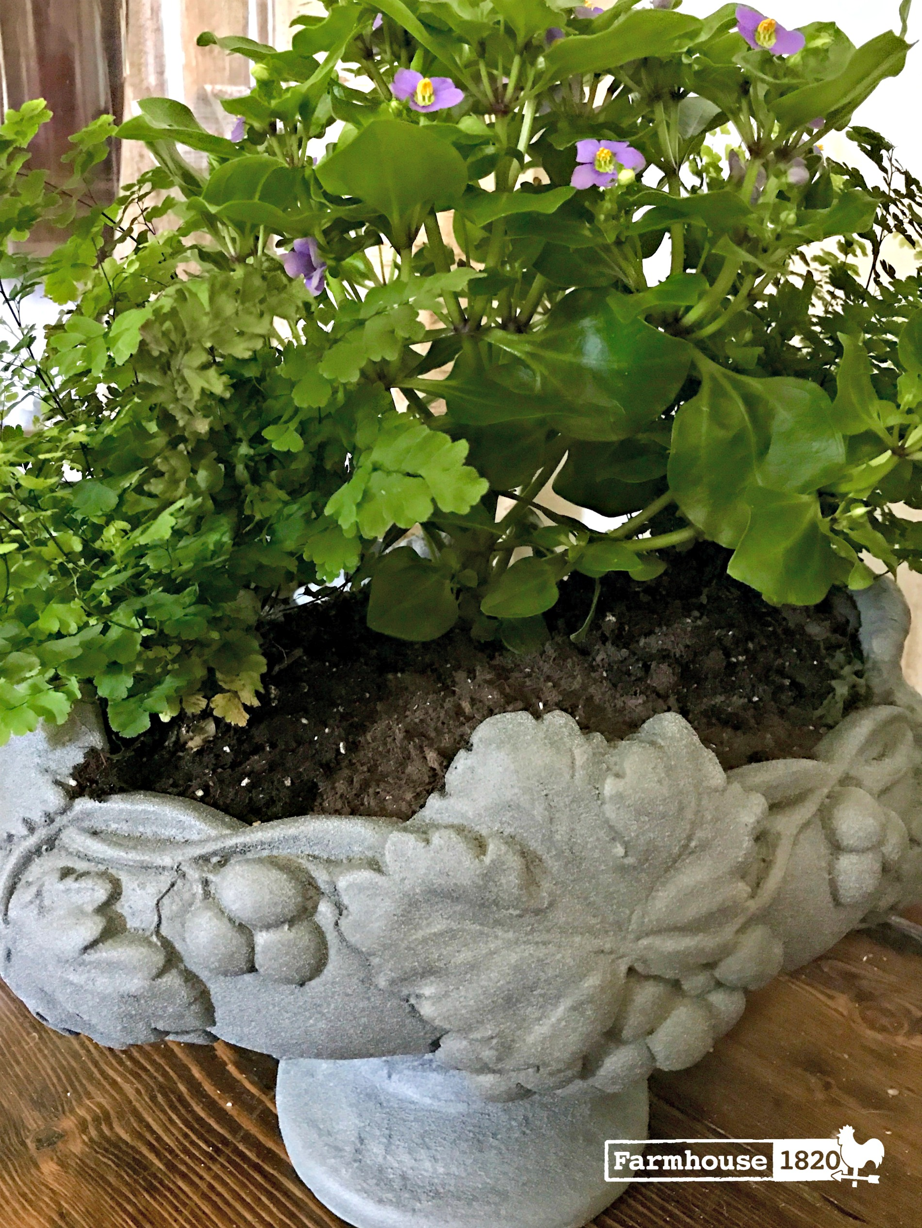 planter - how to change things up