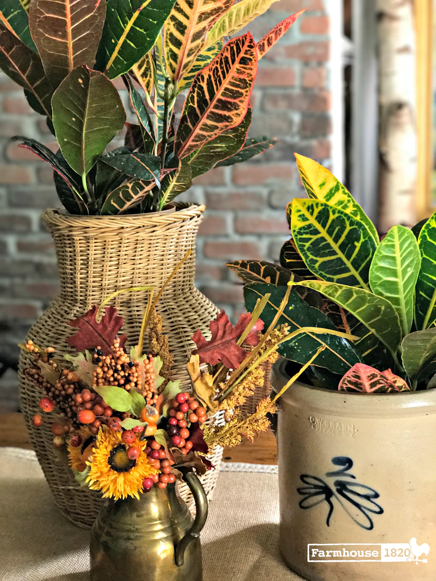 fall decorating - fall plants in antique vessels