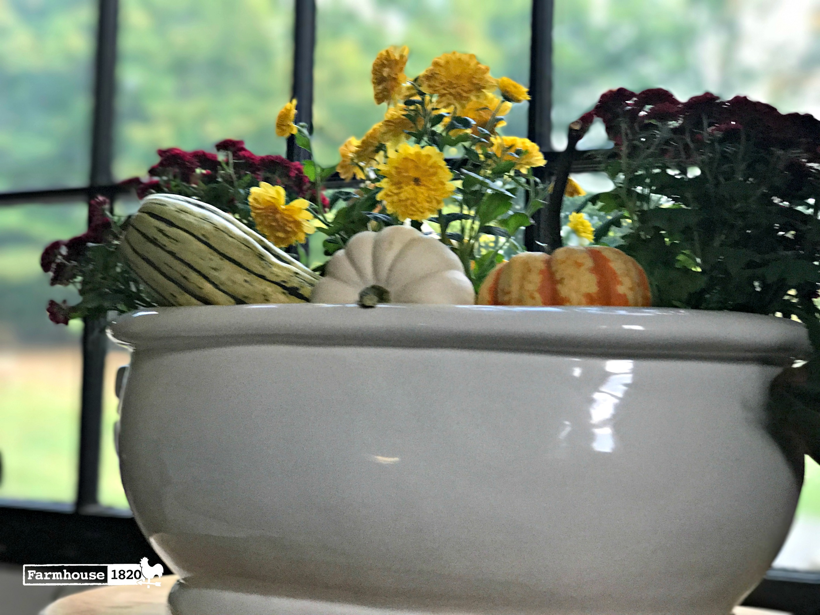 fall home tour - mums in the den