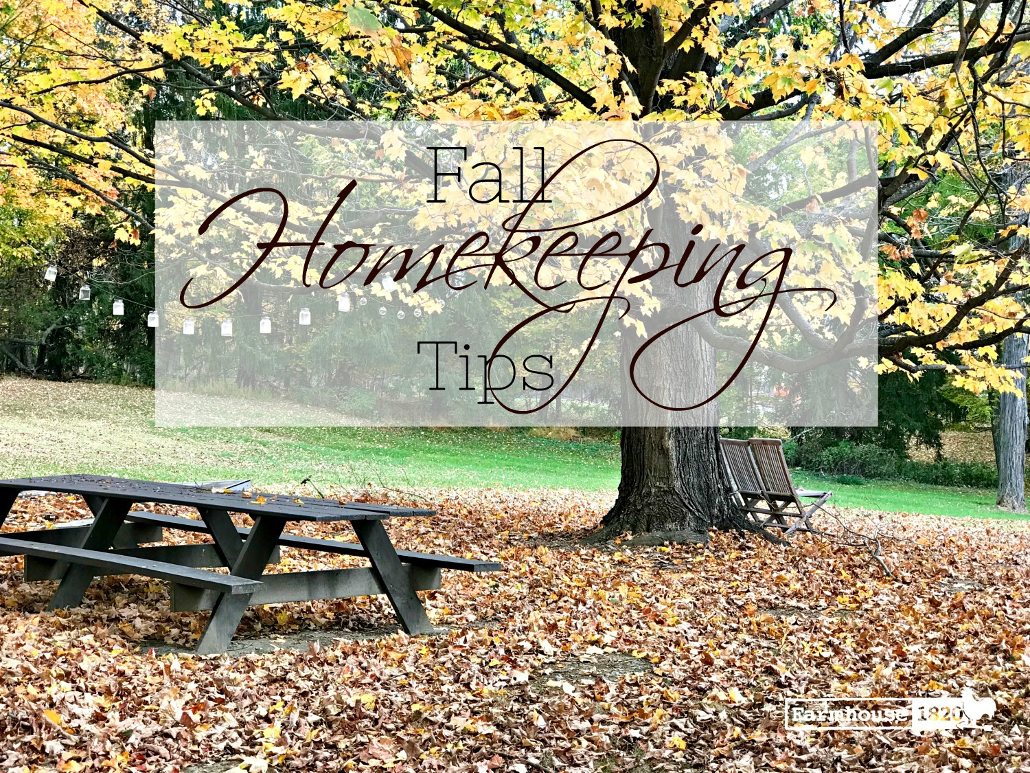fall homkeeping tips