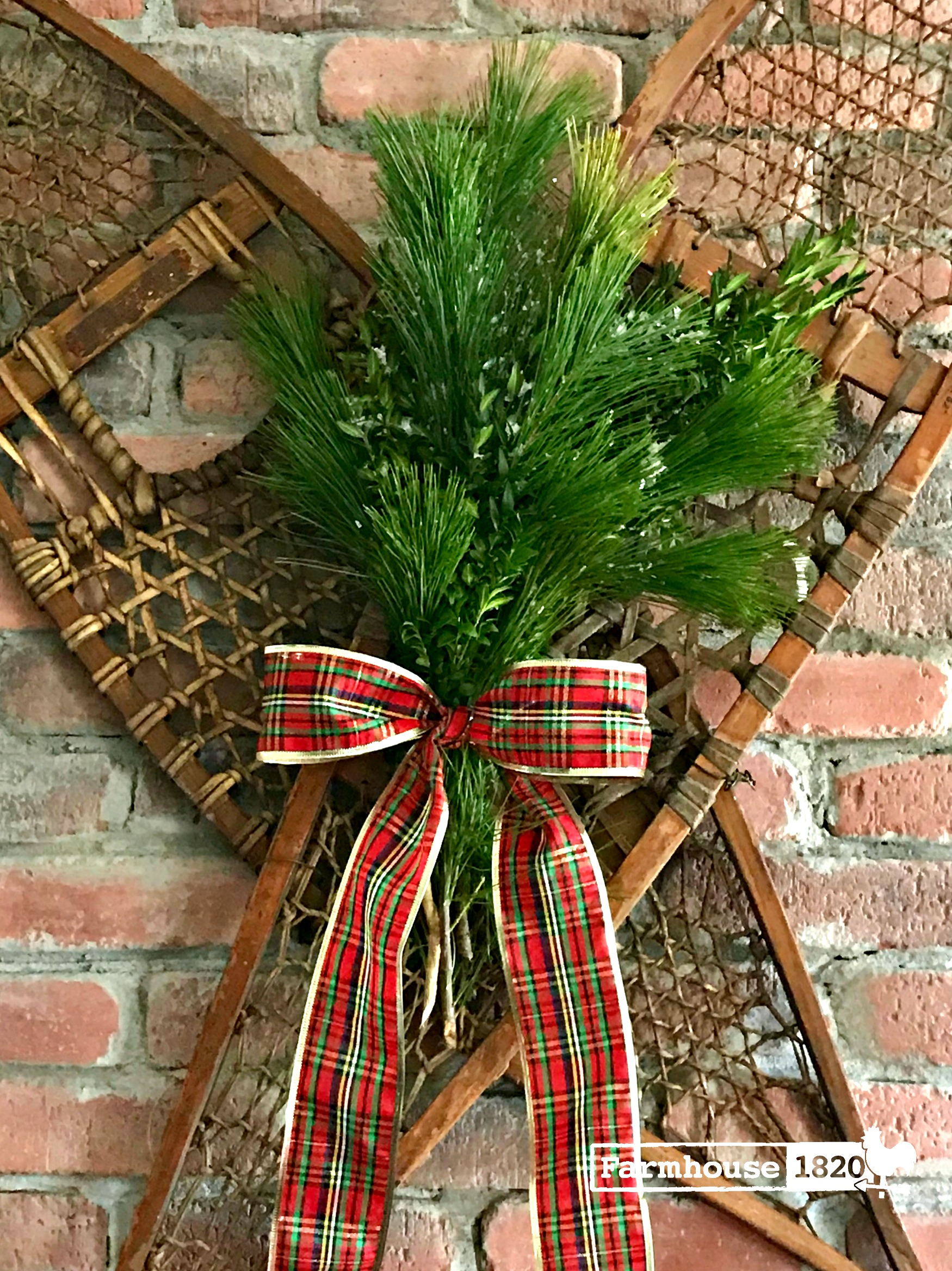 Holiday vignette - a snow shoe show stopper