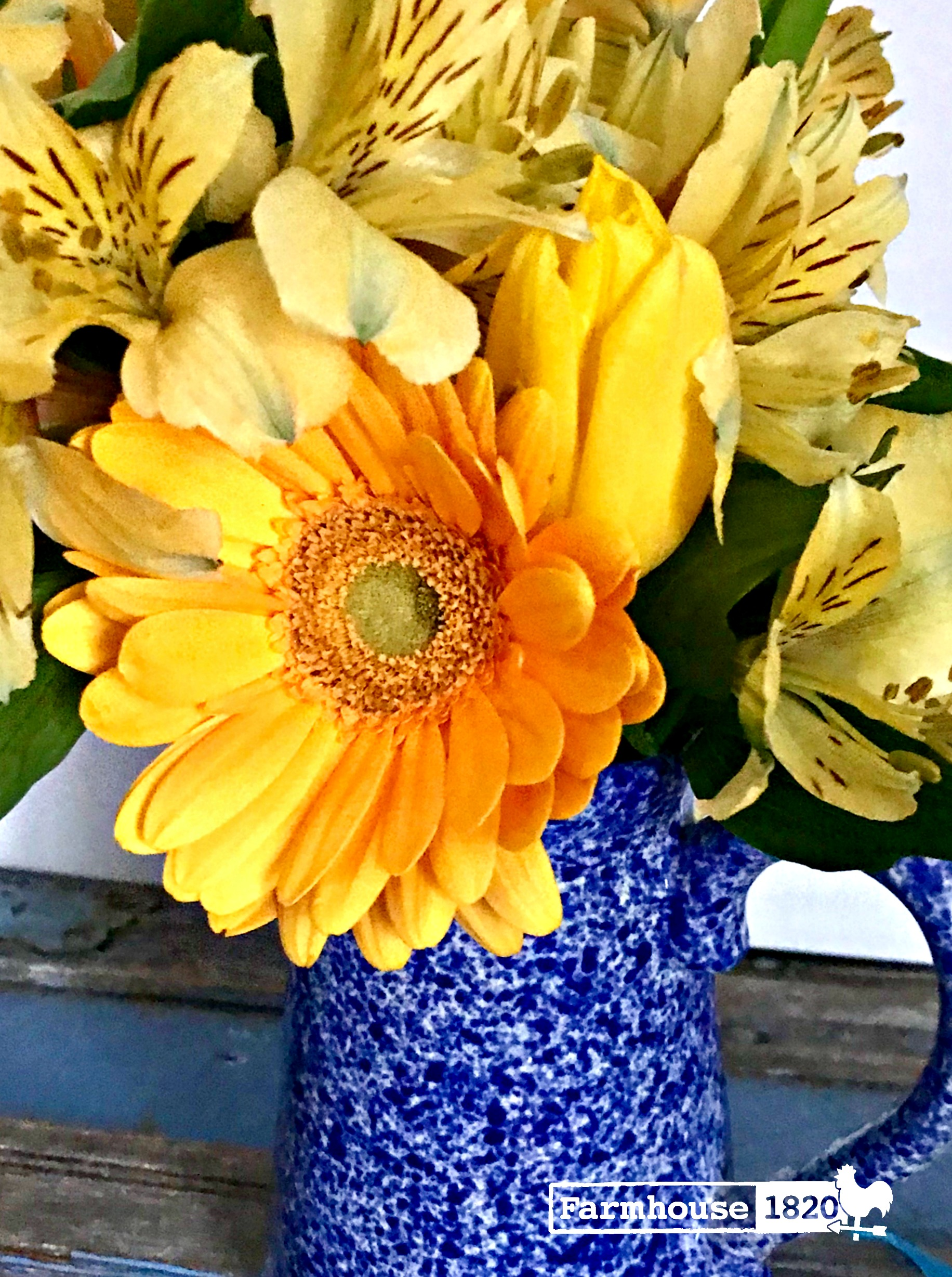 winter blues - sunny flowers bring smiles to our faces