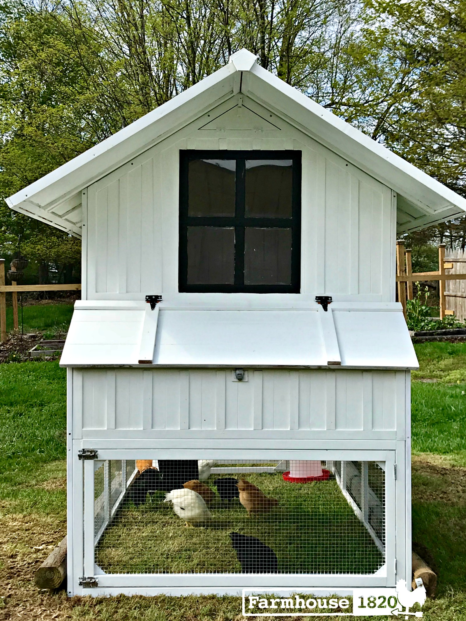 chicken coop - the back of the coop