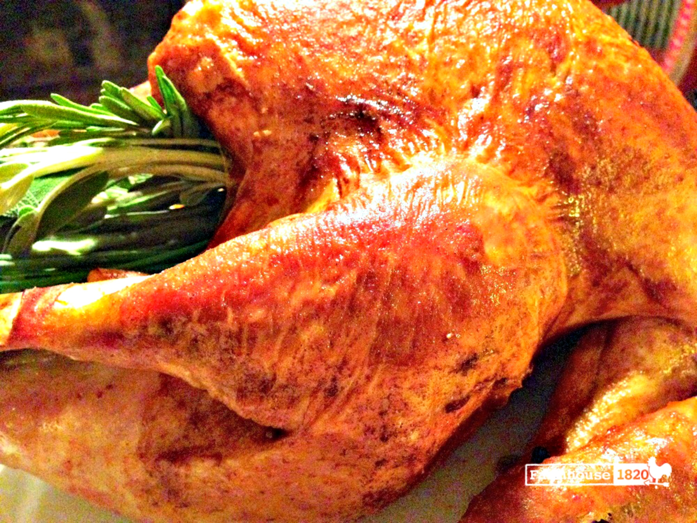 Thanksgiving - the perfect roasted turkey