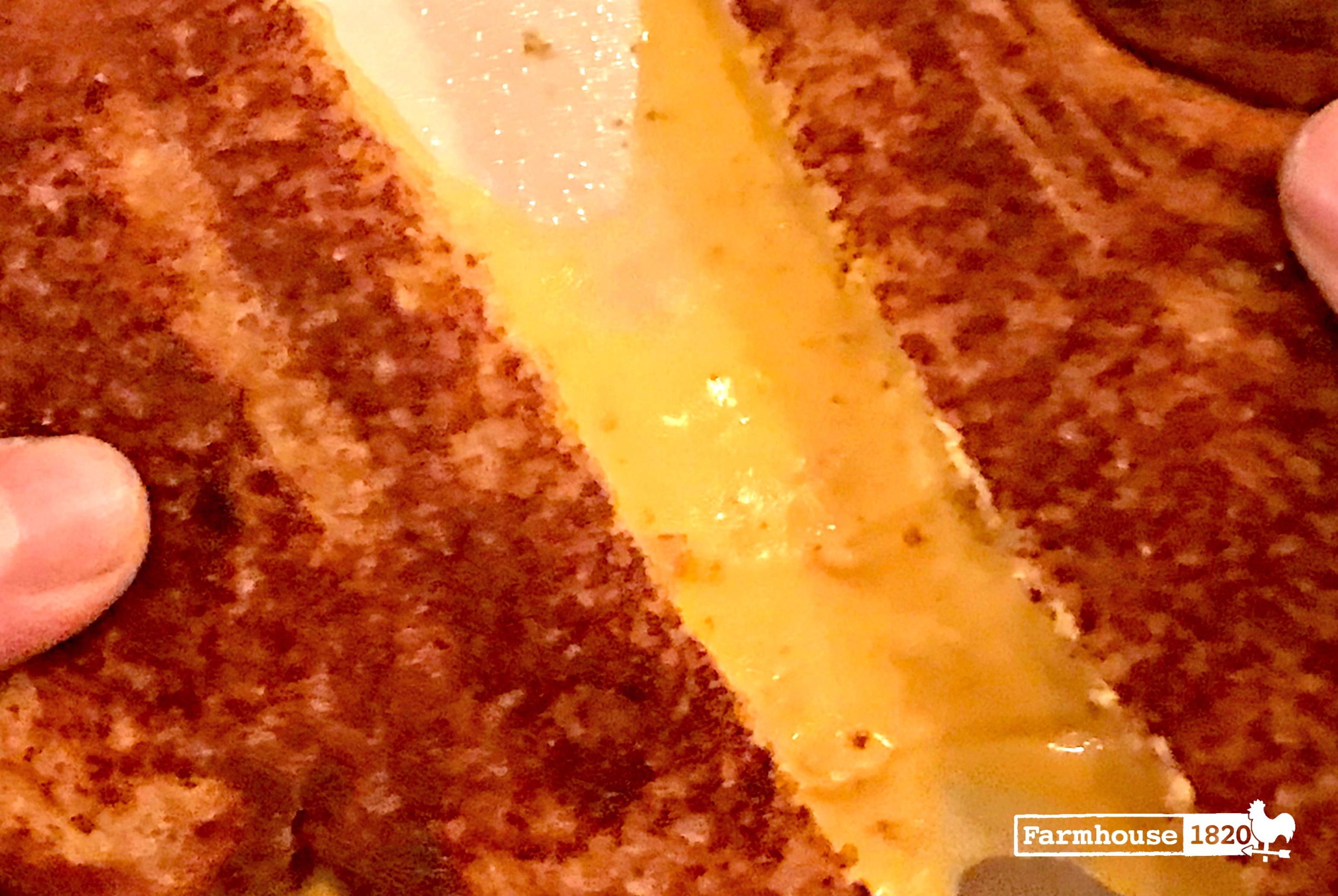 grilled cheese - gooey melted cheese is mouth-watering