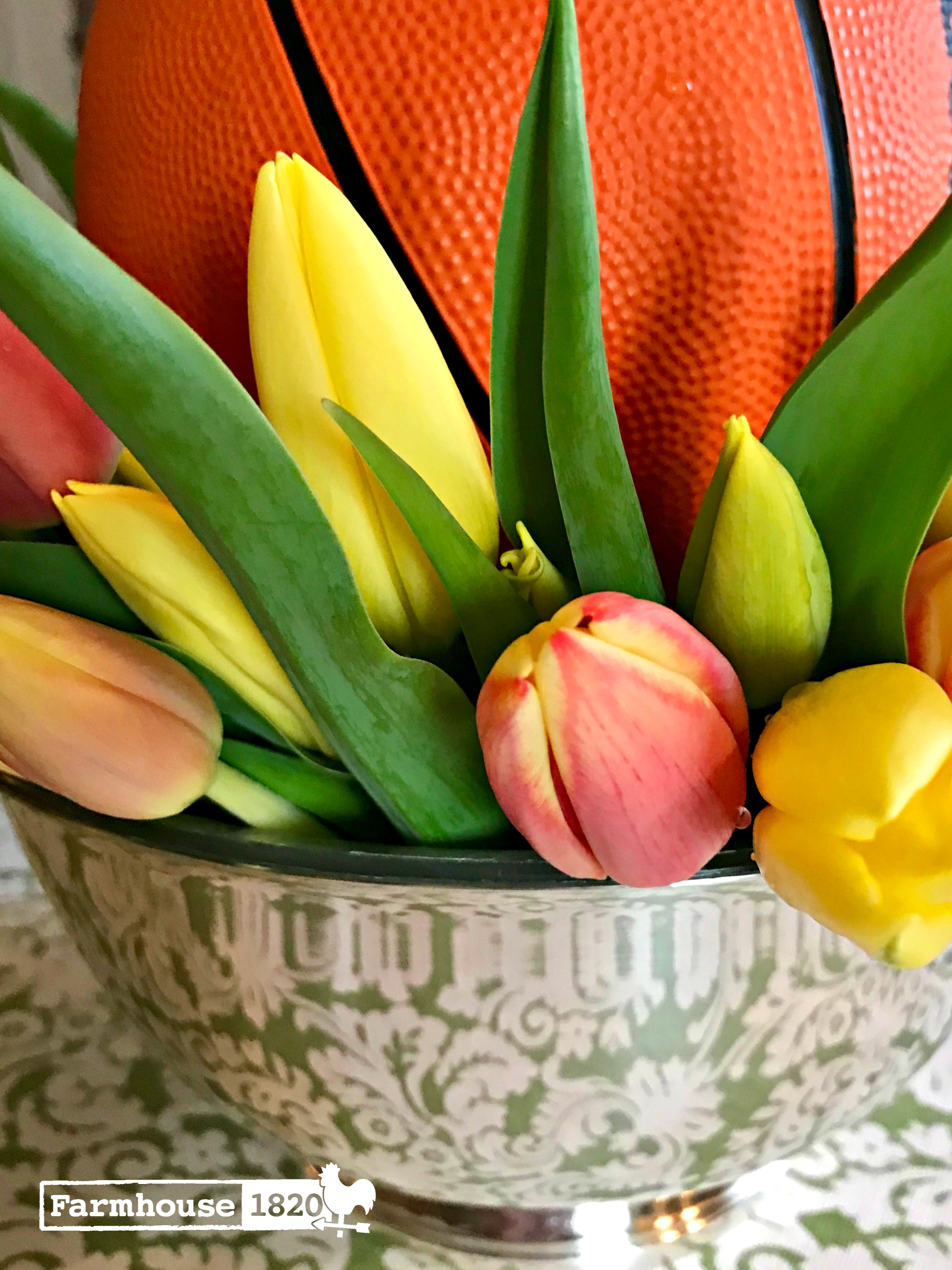 March Madness - tulips and a basketball