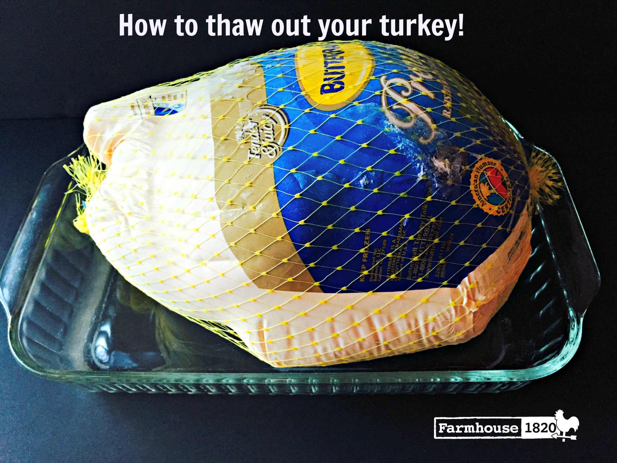 Turkey - how to thaw a frozen turkey
