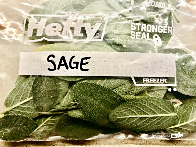 fresh herbs - freezing fresh sage