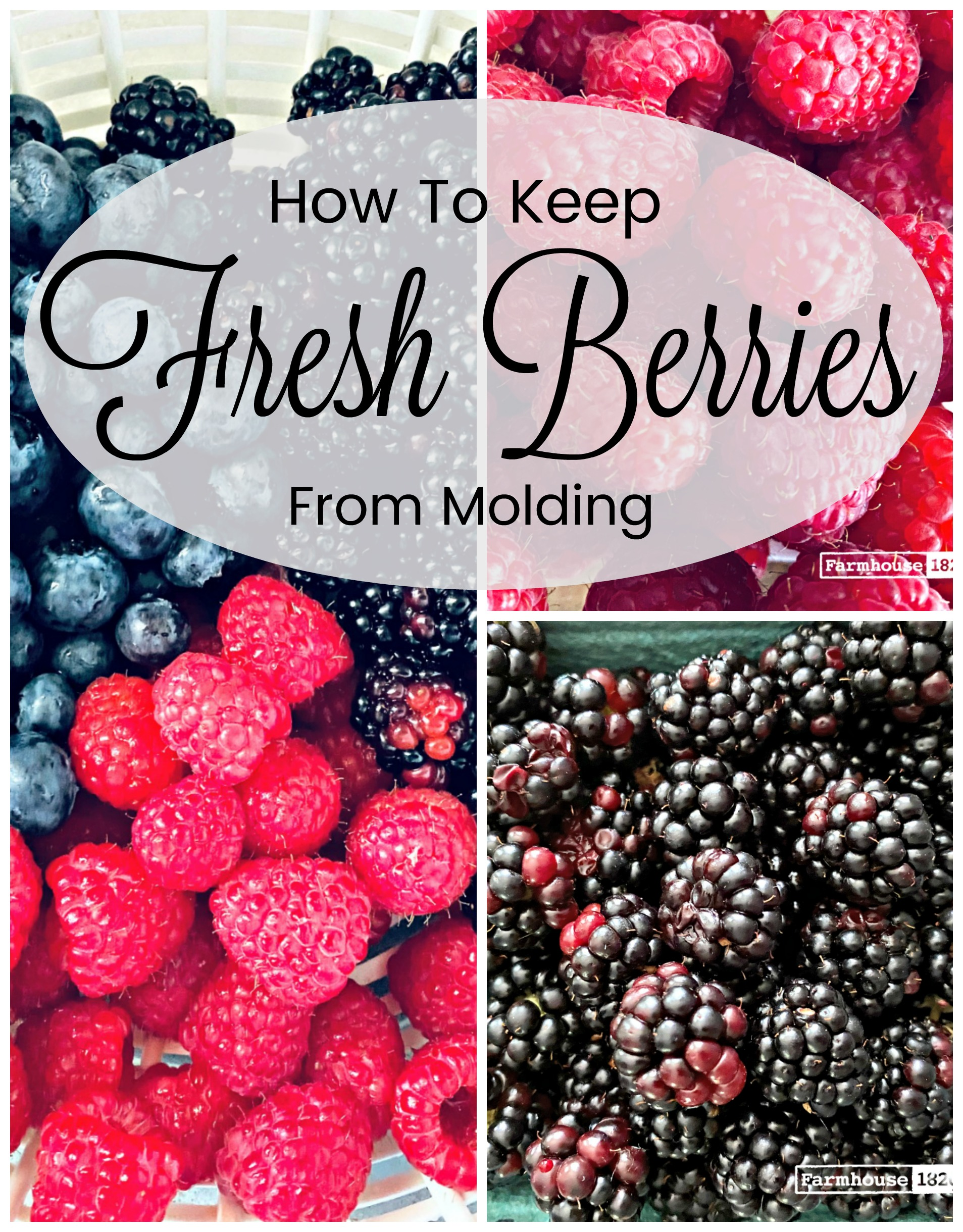 pinterest - fresh berries quick tip
