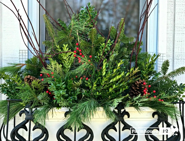 holiday arrangements - how to create a beautiful windowbox arrangement